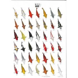 Poster de variétés de carpes Koï N°2