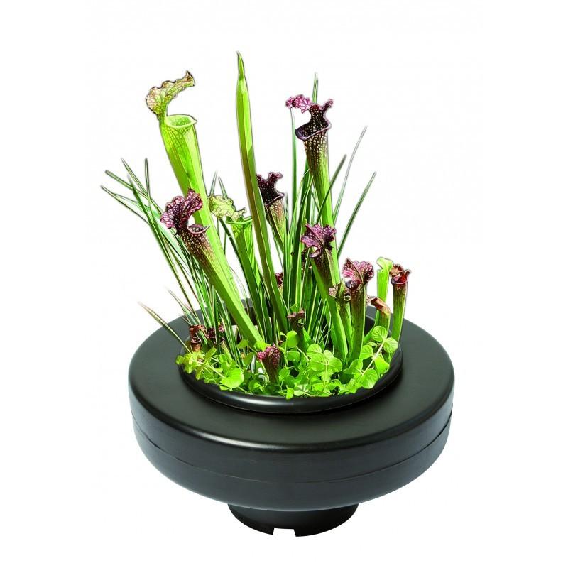 Panier plante flottant d 30 cm boutique bassin - Plante pour bassin exterieur ...