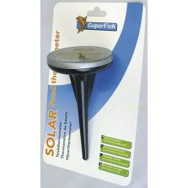 Thermomètre solaire de bassin